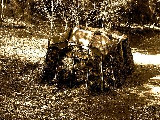 La capanna del carbonaio